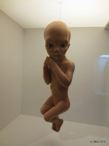 Star Child (Taken at the Kubrick Retrospective at TIFF Lightbox November 2014)